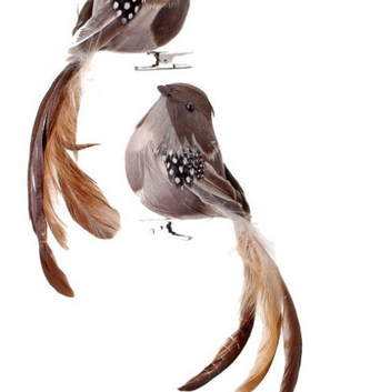 Natural Feathered Long Tail Bird Ornament (2-Styles)