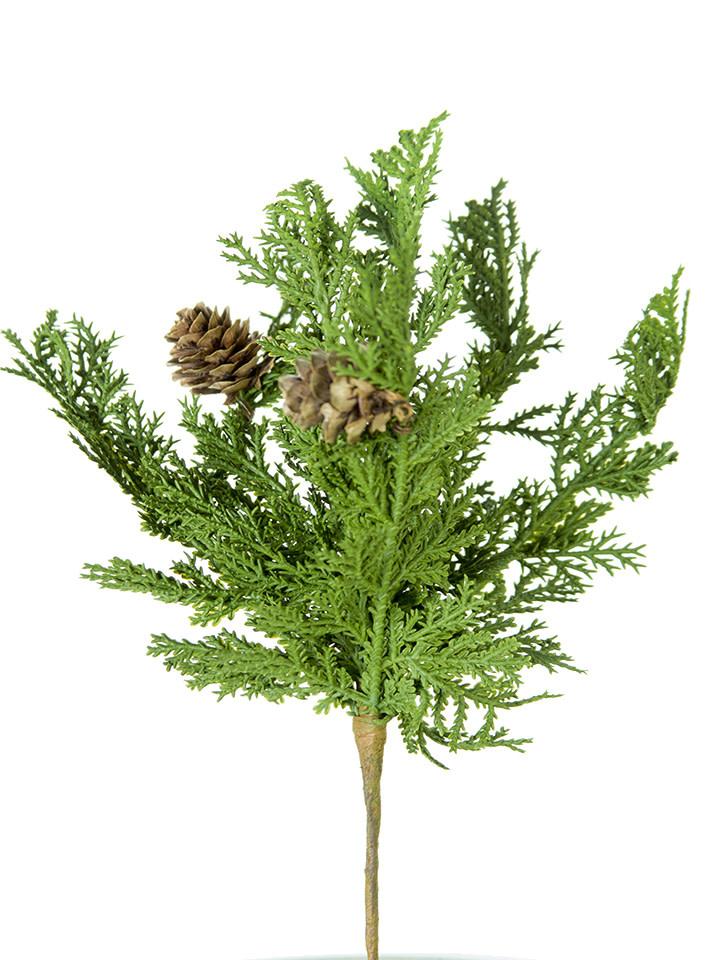 Mini Cypress Pick