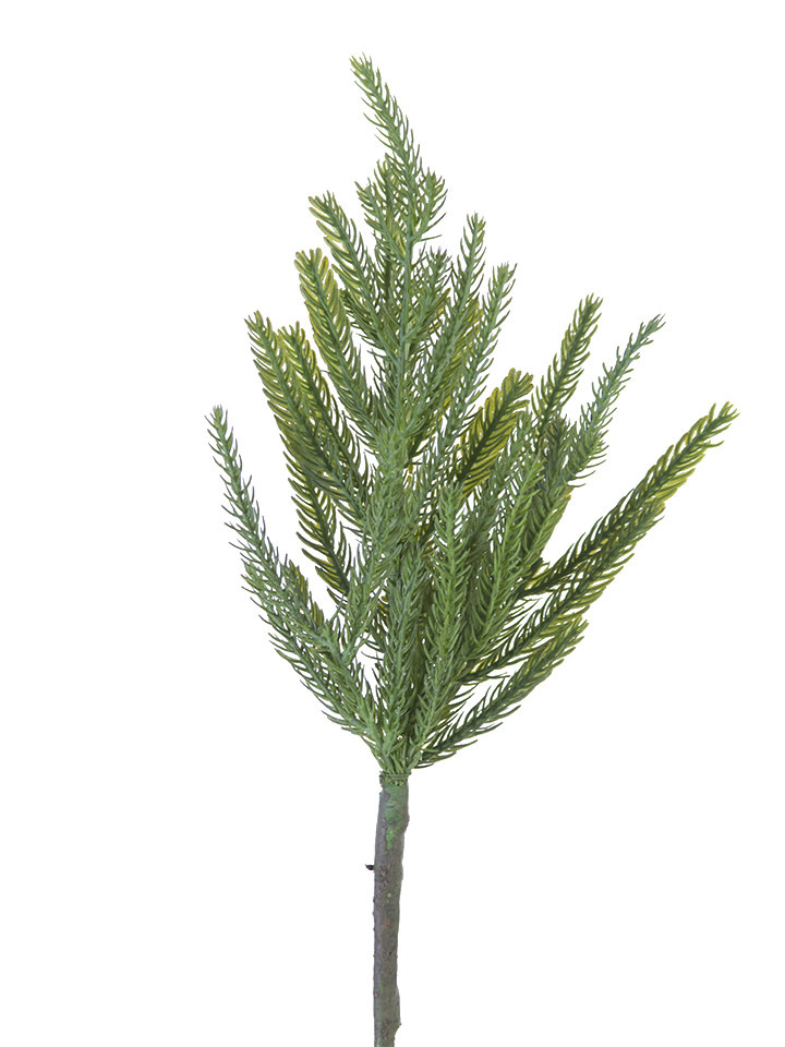 Natural Fir Pine Pick