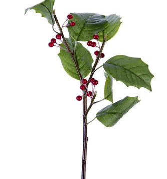 Holly Berry Pick