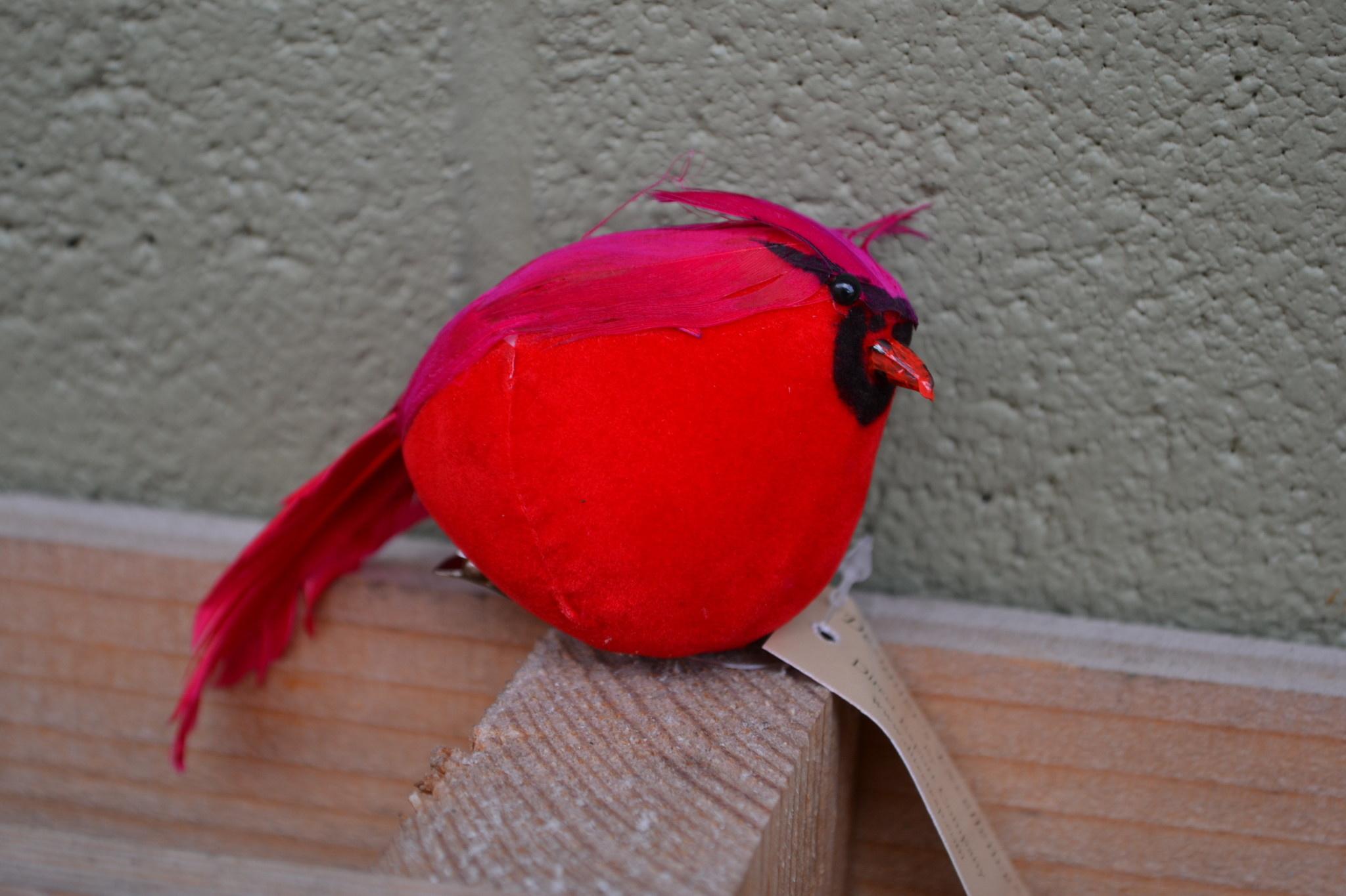 "Clip-On 5"" Fat Cardinal"