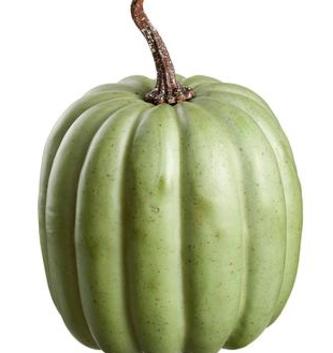 Large Speckled Green Pumpkin
