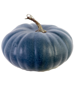 Blue Harvest Pumpkin (3-Colors)
