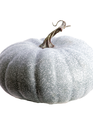 Blue Harvest Pumpkin (3-Colors)