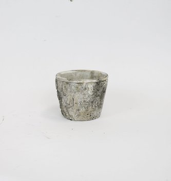 Cement Birch Container
