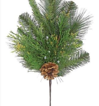 Himalayan Pine Pick
