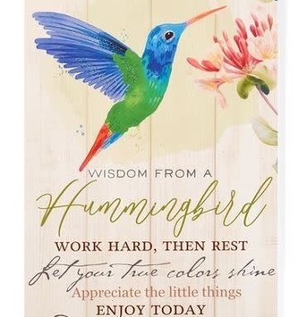 Wisdom From A Hummingbird Wall Art