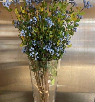 Wild Blueberry Foliage Bundle