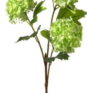Triple Bloom Viburnum Branch (2-Colors)