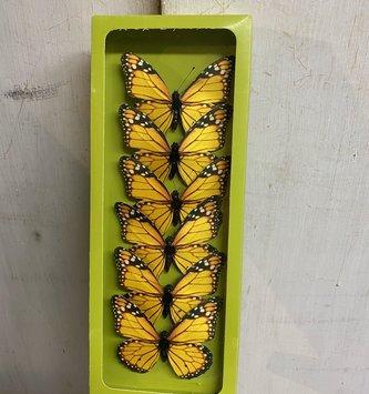 Box of 6 Monarch Butterflies