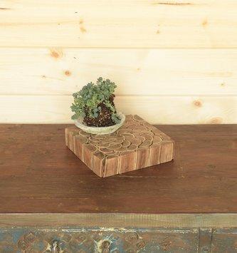 Square Wood Slice