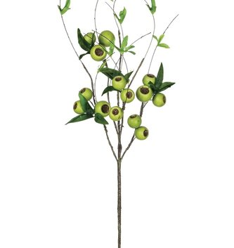 Green Willow Berry Pod Spray