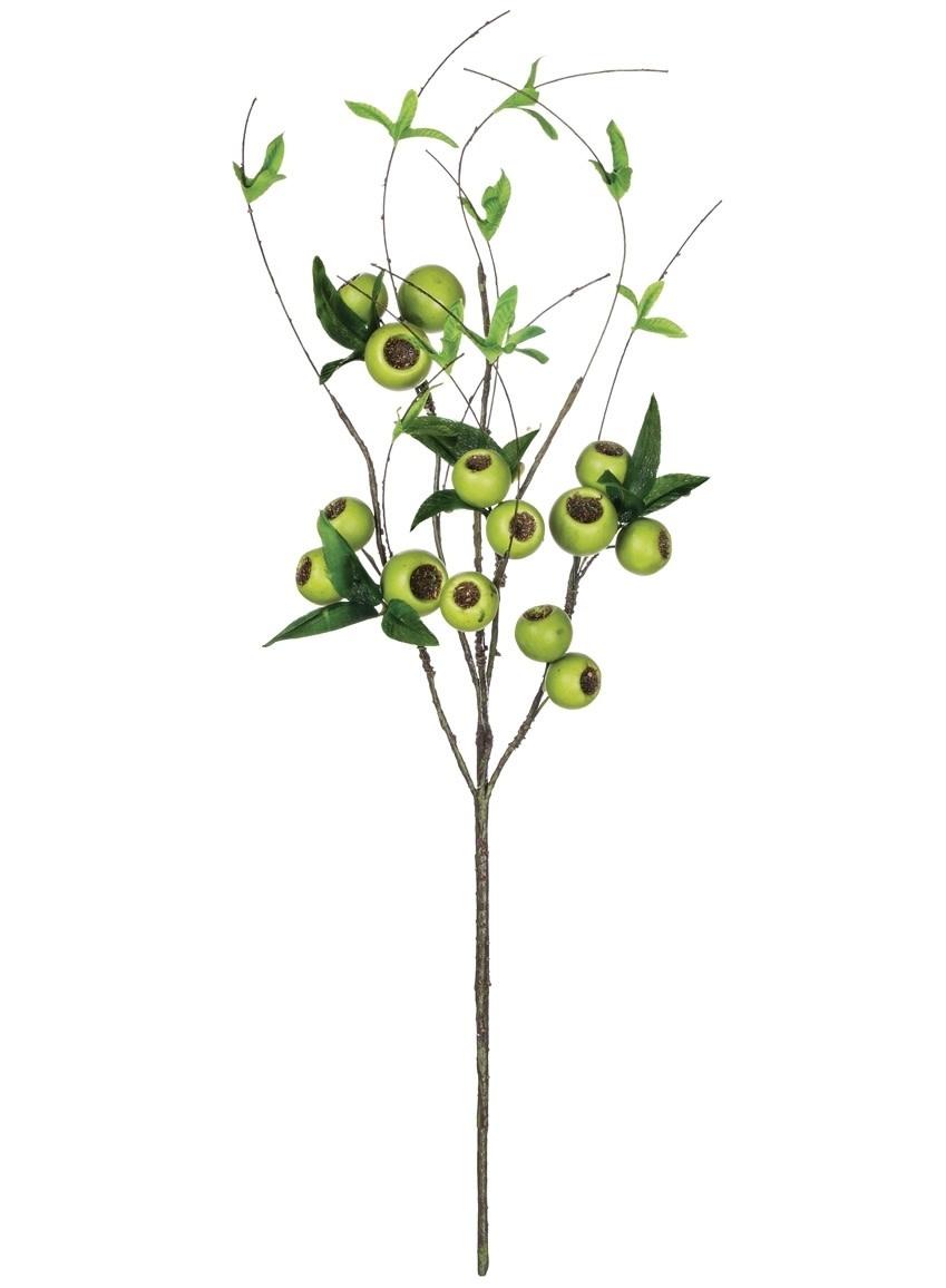 Green Willow Berry Pod Spray