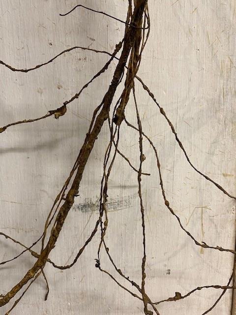 6-ft Natural Twig Garland