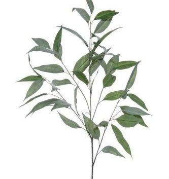 Willow Eucalyptus Spray