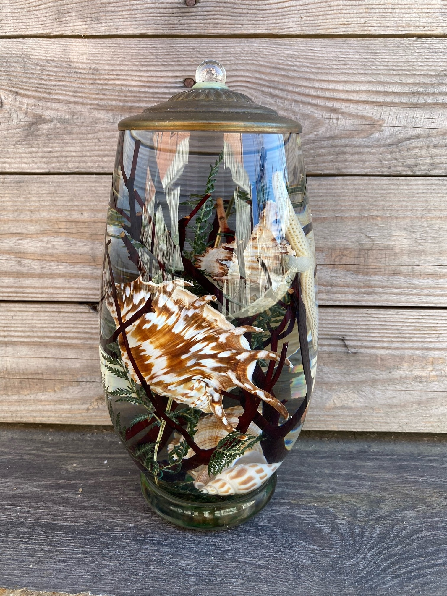 Seashell Lifetime Oil Candle (9-Styles)