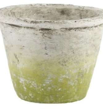 Cement Weathered Pot
