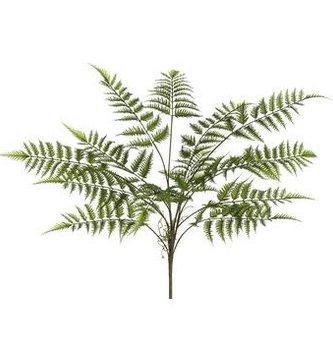 """29"""" Forest Fern Bush"""