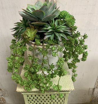 Trailing Succulent Arrangement