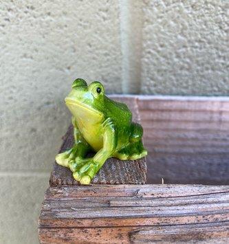 Mini Sitting Frog