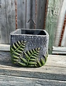 Cement Fern Container (2-Styles)