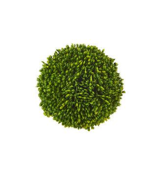 4'' Sedum Ball