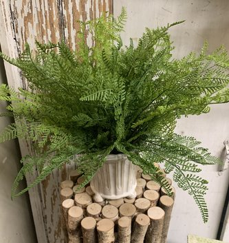 Custom Lace Fern in Ceramic Footed Container