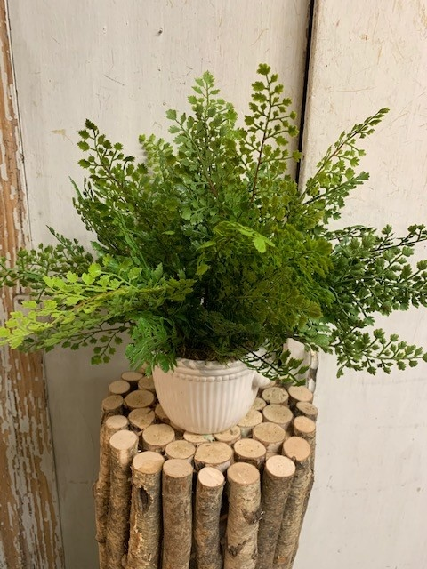 Custom Maidenhair in White Ribbed Container Small