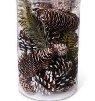 Assorted Snowy Pine Cone Cylinder