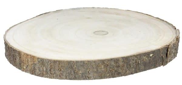 Large Birch Log Slice