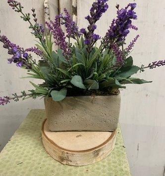 Custom Lavender in Gray Cement Container Rectangular