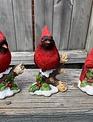 Cardinal on Snowy Branch (3-Styles)