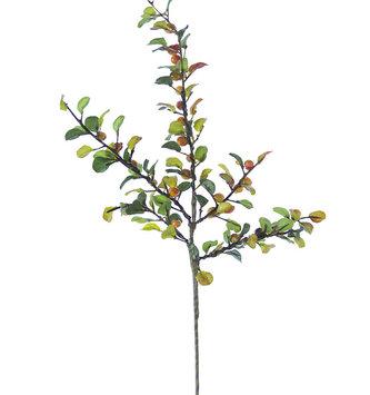Boxwood Berry Spray (3-Colors)