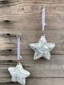 "3"" Glass Prism Star Ornament (2-Styles)"