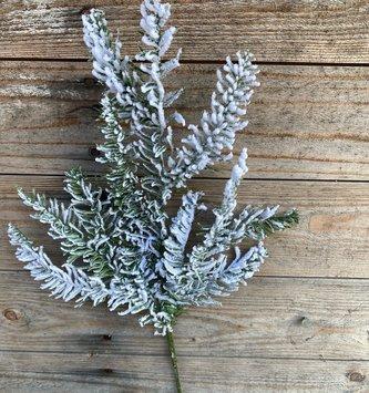 Snowy Noble Pine Spray