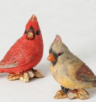 Male & Female Cardinal Couple