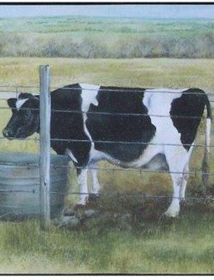 Cow in Field Box Print