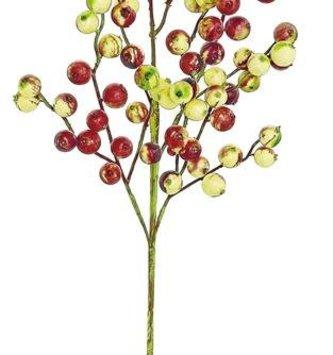 Gooseberry Spray (2 colors)