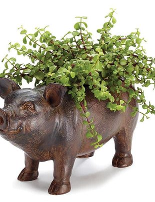 Small Pig Planter