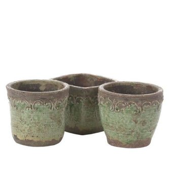 Light Green Scroll Container