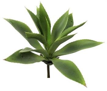 Light Green Agave Pick