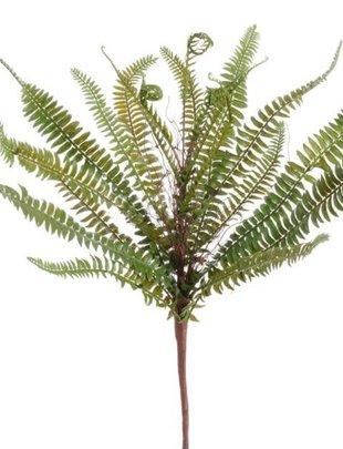 """17"""" Green Fern Bush"""