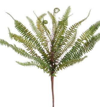 "17"" Green Fern Bush"