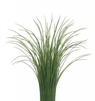 Grass Vase Container