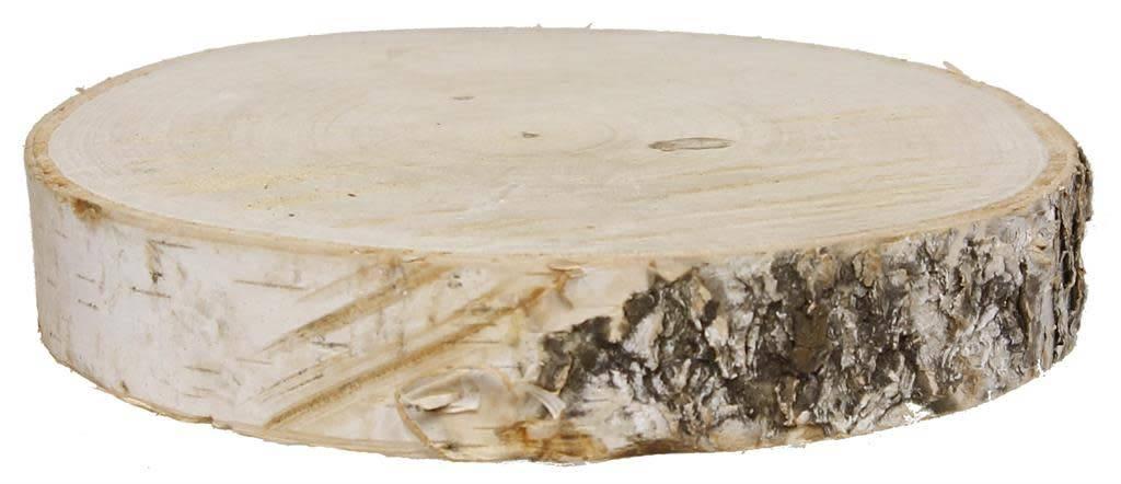 Birch Slice