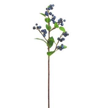 Blueberry Spray