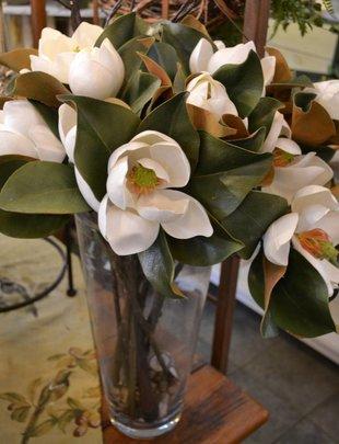 Small Magnolia Bloom