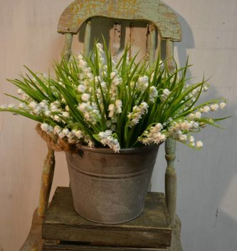 White Lily of the Valley Bush
