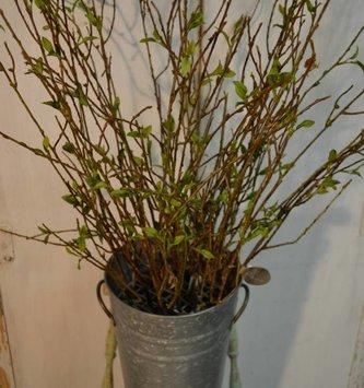 Twig Spray w/ Leaves