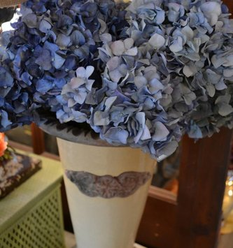 Pointed Petal Hydrangea (3 Colors)